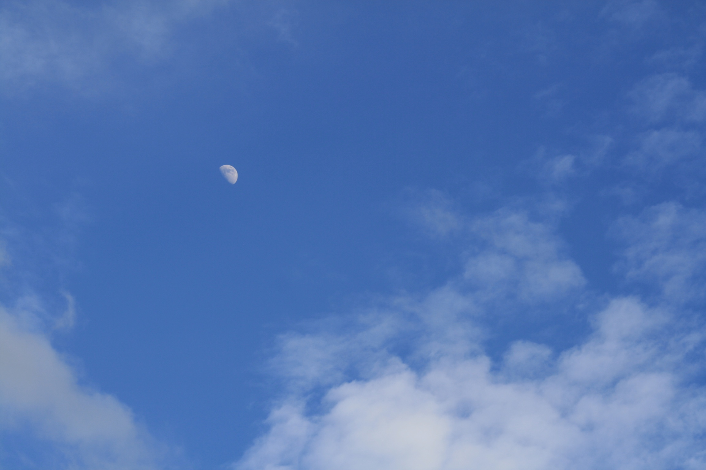 Big blue sky with moon and thin cloud.